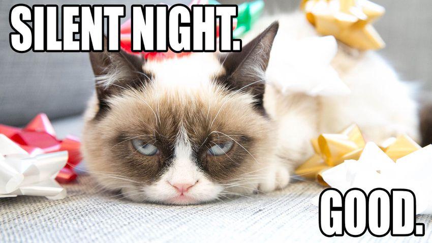 Grumpy cat silent night